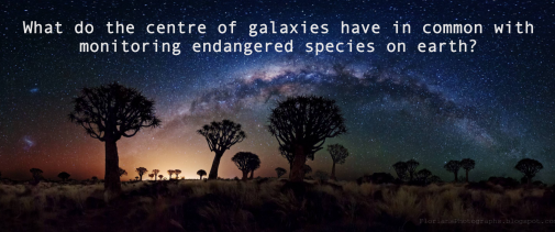 What do the centres of galaxies have in common with monitoring endangered species on earth